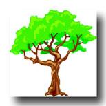 tree meaning in tarot