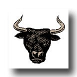 King Of Pentacles Meaning Bull