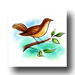 Bird Meaning in Tarot