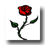 Rose meaning in Tarot